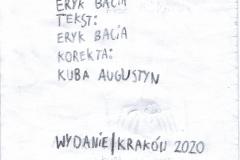 Historia_pajaka02